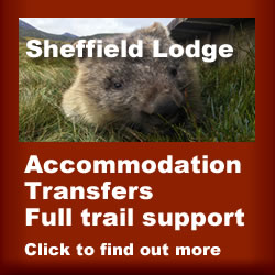 Sheffield Lodge Tasmanian Trail Advert